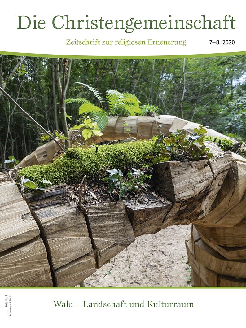 Wald – Landschaft und Kulturraum